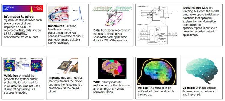 WBE-via-neural-prosthesis-20180407