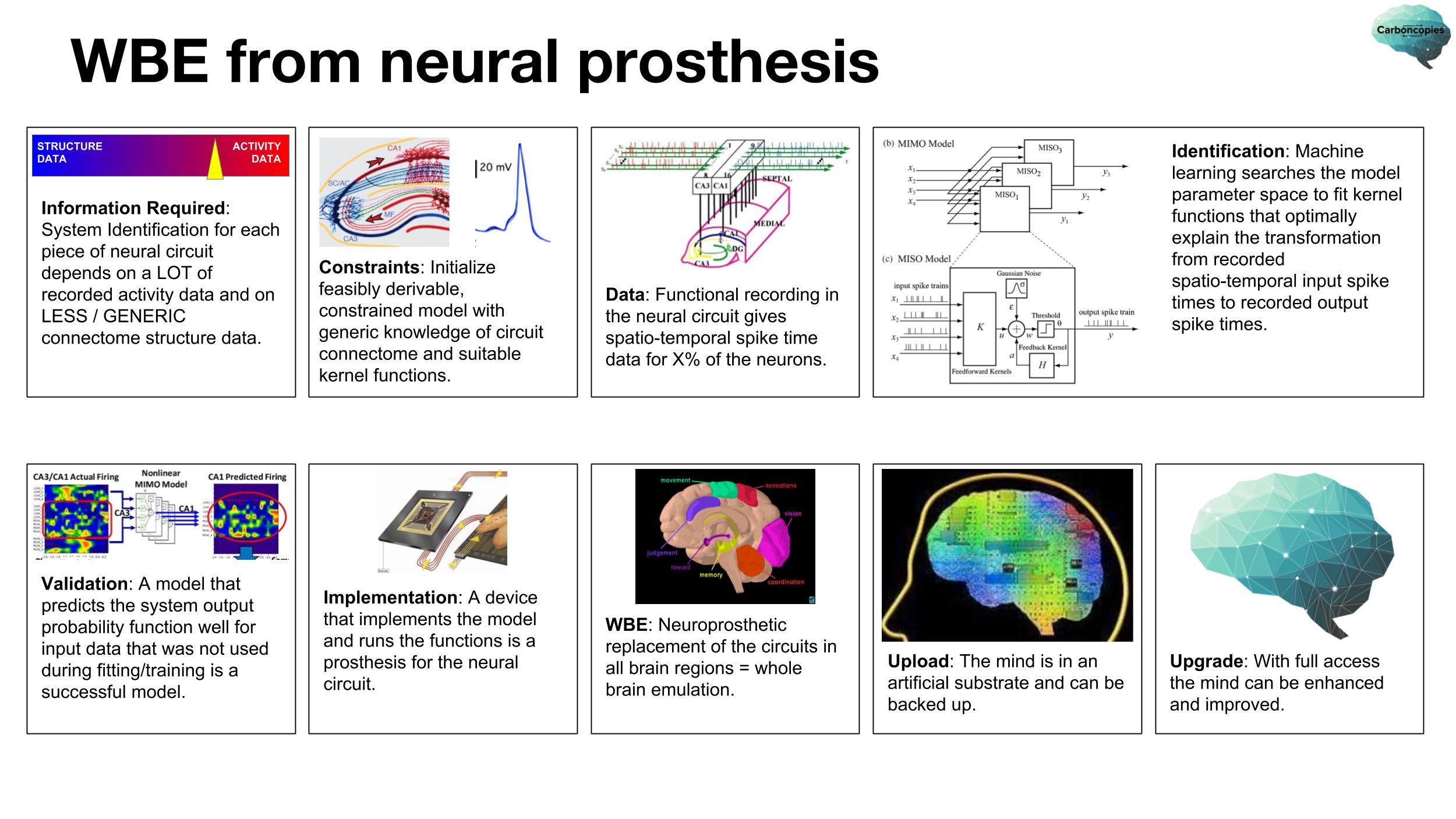 WBE-via-neural-prosthesis-20180407-2500x1406